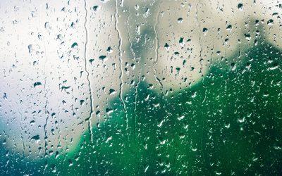 Wykorzystanie deszczówki – sposób na deficyt wody