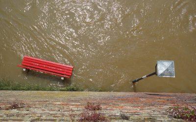 Inteligentne zarządzanie wodami opadowymi w mieście