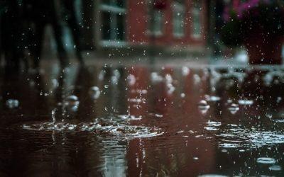 Jak miasta łapią deszczówkę? Dofinansowania na retencję w Warszawie, Bielsku-Białej i Lublinie