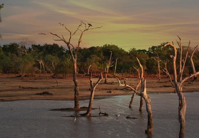 Innowacje ze świata – zarządzanie wodami gruntowymi jako sposób na suszę w Mozambiku