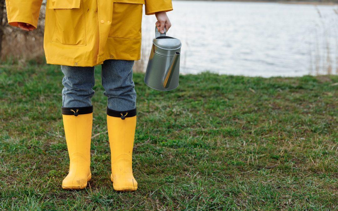 Jak edukować w obszarze retencji? Jak uczyć o gospodarowaniu deszczówką?