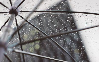 """Jak racjonalnie zarządzać deszczówką, czyli """"Technologie domowej retencji"""""""